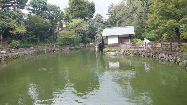 「渋谷から駒場、代官山」ウォーキング