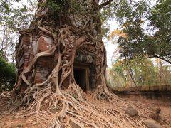 カンボジア 果てしなく遺跡を巡る旅③ ラピュタの世界へ迷い込む ベンメリア&コーケー