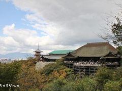 関西旅行2日目*京都①♪。*゚