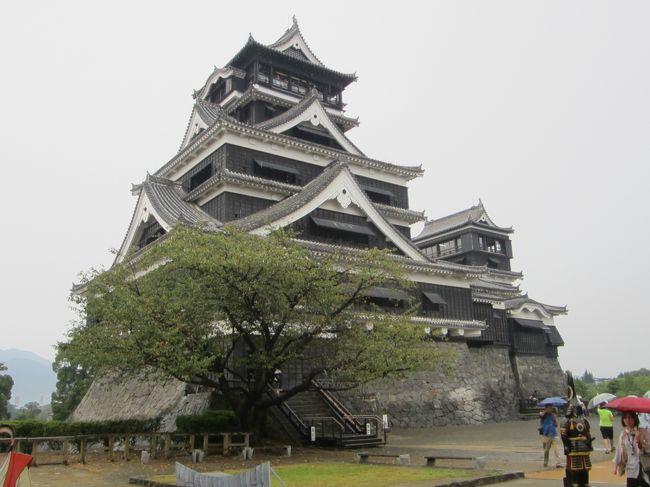 熊本城見て熊本ラーメン食べました。からし蓮根大好き!