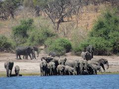 2週間のアフリカ南部周遊旅行*ボツワナ