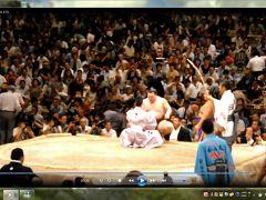 東京旅行:大相撲九日目④