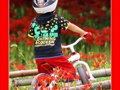 Solitary Journey[1110]真っ赤な絨毯、満開の彼岸花畑でちびっ子ライダーと遭遇♪<吉舎町辻地区「彼岸花の里」>広島県三次市