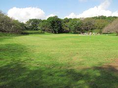 佐倉市散策(36)・・江戸城の東の守り、老中格の佐倉城を訪ねます。