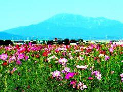 羽島の旅行記