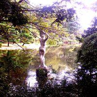 初秋の空気と花々とーーー(東京都唯一の植物公園の魅力)