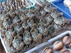 こんな時期ですが今年も澳門で上海蟹と珠海でも上海蟹(バッタ物)