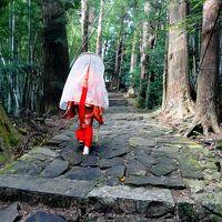 【ダイジェスト】世界遺産「熊野古道:大門坂」、日本の滝100選「那智の滝」、十津川村「谷瀬の吊り橋」(奈良)など紀南の旅