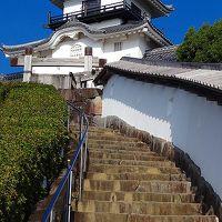 掛川城の見学