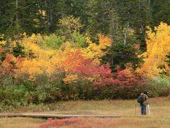 紅葉の栂池自然園♪~2012~
