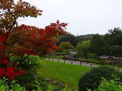 大高緑地公園 和風庭園の観賞
