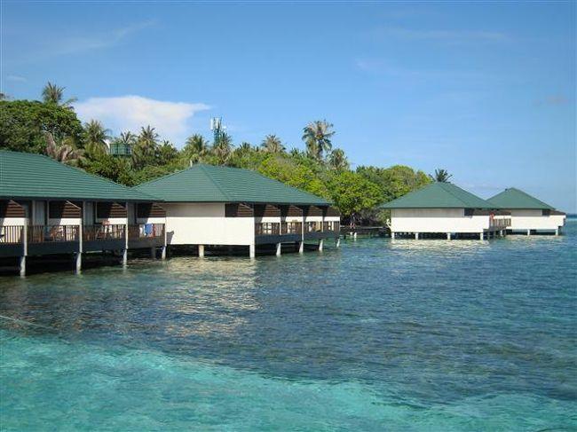 Embudu Village Resort <br />(2012年10月09日現在の情報です。情報は予告なしに変更されますので、予めご了承ください。GSTは2013年1月から8%になります。)<br /><br />2012年10月1週目にビーチのお部屋(スタンダード&スーペリア)の内装工事が全室終了しました。<br /><br />『モルディブらしいね…』島を訪れると、まずこの印象だと思います。<br />素朴で木々も島も人々も飾らない、のんびりとした雰囲気に包まれた島内。普段の忙しさを忘れさせてくれて、気軽に滞在できるリゾートです。<br /><br />南マーレアトールの北部に位置する島。空港からスピードドーニで約40分。<br />大きなスピードドーニなので、夜は星空を眺めながら、日中は綺麗な景色を眺めていると、<br />アッと言間です。<br />外洋側はトビウオが良く飛んでいます。チャネルから中に入るところはイルカの通り道。<br />桟橋に到着すると、珊瑚礁が広がるハウスリーフ。<br /><br />島の雰囲気<br />島内は緑の木々が多く、ビーチのお部屋前には、モルディブの伝統的なスイングがぶら下がっているところが多い。揺られながら座っていると、ウトウト…と寝てしまえるくらい気持ちが良い…。ヨーロッパ人はハンモック持参でこかれる方も多く、お昼寝をされています。<br />ドイツ人のお客様が多いので、島内はのんびりと静か…。<br />朝から読書を楽しんでいる人、ハウスリーフ&ダイビングポイントが良いので、海を満喫している方々…とさまざまです。<br />北西側に広々としたビーチがあり、朝の早い時間から日焼けを楽しむヨーロッパ人の姿を見かけます。夕方はサンセットが綺麗に眺められます。また、この辺りはラグーンも広いので、浅瀬のラグーンないもとても綺麗です。<br />白い砂地だけかな〜と思ったら、ツバメウオのファミリーが優雅な姿で、のんびりと泳いでいました。小さな小魚、コバンアジもスイスイ泳いでおり、透明感がある水の中は、つい、のんびりしがち…<br />水上コテージの桟橋下には、沢山のお魚さんが泳いでいます。よ〜く見ると砂地と同化したエイちゃんが潜んでいたりもします。<br /><br />ハウスリーフでのスノーケリング…<br />これでこそモルディブの海!!!<br />ハウスリーフはやっぱり良い!これでこそエンブドゥヴィレッジ〜!<br />大物、小物、群れ物まで、バラエティに豊富にみられるのが、エンブドゥのハウスリーフの魅了です。<br />テーブル珊瑚もドロップオフの壁に張り付いています。<br />クマノミちゃん&イソギンチャクが多く可愛い〜。カメ、パロットフィッシュ(大きい)、ヨスジフエダイ、サメ、ウツボ、マダラトビエイ、カスミアジアジ、ロウニンアジ、カスミアジ、コバンアジ、ゴンガメアジ、バラク―ダ、マグロ、ハタタタテダイ、マダラトキエイ、エイ、パウダ-ブルー、ナポレオン、ニシキヤッコ、タテジマキンチャクダイ、ヒレナガハギ、その他、沢山の魚がいます。<br />ドロップオフへのパッセージが4ヶ所にあります。全体的に何処のドロップオフはなだらかです。<br /><br />地図を参考にされてください。<br />メインの桟橋(水上コテージ)横:ボート停泊する時もありますので、ボートにはお気を付けください。<br />                リーフを左肩にしてサンドバンク方向に泳いだ場合。<br />                浅瀬でもエイがいます。ウツボさんが顔を出しているときもあります。ハタタテの群に遭遇することも…。<br />雨季の時期は運が良いとマンタを見られる方もいます。<br />                <br />サンドバンク側:水上コテージ側から泳いでくると、サンドバンクが近づくにつれて、リーフ沿いの浅瀬カスミアジの移動の群がいるときも...。<br />        ヤッコ類の魚も多いです。<br />        白いポールから少しだけリーフが伸びた方向に行くと珊瑚が綺麗です。<br />        西側のコーナーのリーフは遠いので泳がないようにお願いします。<br /><br />お部屋番号78辺り:リーフを左肩にしてメインの桟橋方向に泳いだ場合。<br />          コーナーは潮が入り込むところですので、潮の流れにはお気を付けください。潮が当たるところは、大きなお魚も見られたりするので面白いのですが、バラク―ダ、マグロちゃんを見ました。<br />          リーフを右肩にしてダイビングの桟橋方向に泳いだ場合。<br /> 