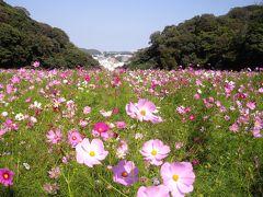 くりはま花の国と山手散策