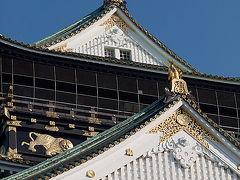 大阪城探鳥記