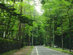 軽井沢 学生時代以来の再訪