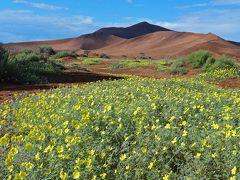 アフリカは 自然も人も驚異だねっ! ★ 赤い砂の「ナミブ砂漠」&赤い肌の「ヒンバ族」を訪ねて♪