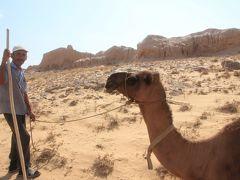 2012年中央アジア旅行~ウズベキスタン・キルギス・カザフスタン~ハイライトその8:贅沢にも一人でチャーターした乗り物~楽々エクスカーション>