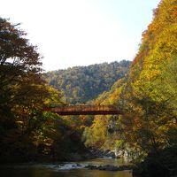 定山渓とさっぽろ湖の紅葉