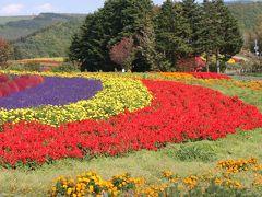日本一早い紅葉を見に☆富良野、美瑛