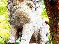 よっしゃ、京都へ行くどす(ぇ)!2012。 北野の天神さんへ。