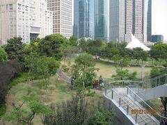 上海の陸家嘴・中央緑地