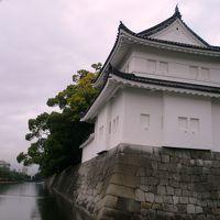 雨の二条城