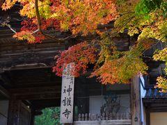 紅葉が美しい神護寺へ