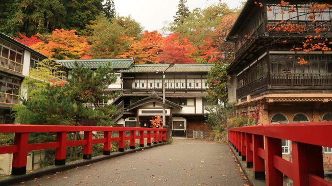 今年はまだ日本の紅葉を見てなかった。<br />吾妻渓谷でちょろっと紅葉みて<br />前から気になってた、四万温泉の積善館・本館へ泊まってのんびりしてた。