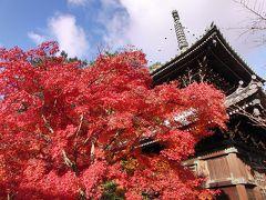 京都('11 紅葉狩り)