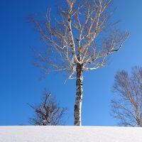 2012年 春の北海道スキー旅行 ~キロロスキー場、札幌国際スキー場~ 1日目