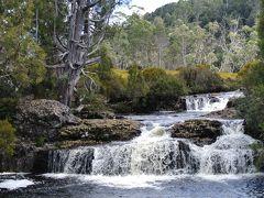 JALエグゼクティブSEASONSで行くオーストラリア・タスマニア島ドライブの旅 4 「クレイドル・マウンテンロッジ」と「Dove Lake」湖を1周トレッキングする