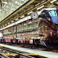 JR東日本 尾久車両センター一般公開「第12回 みんな集まれ!ふれあい鉄道フェスティバル」に訪れてみた