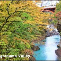 草津温泉&吾妻渓谷へGO! 温泉の後は渓谷で紅葉狩り♪ しかし、そこは、、