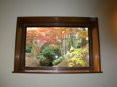 紅葉の箱根美術館にため息…ふー、家にもこんなお庭が欲しいなあ