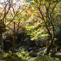 紅葉の花貫渓谷と国民宿舎 鵜の岬