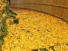 京都 紅葉めぐり~大原野神社、金蔵寺の紅葉