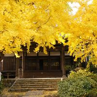 2012 秋を感じたくて黄金色の世界へ@祖父江町