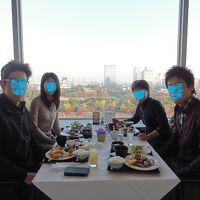 家族で吉野路、大阪、京都の紅葉を楽しむー②大阪城の簡単な歴史、新阪急うめだ本店、大阪ステーションシティ 11月  2012年