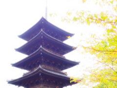 よっしゃ、京都へ行くどす(ぇ)!2012。 東寺へ。