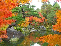 紅葉の日本庭園 由志園(松江市:大根島)