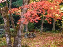 京都・奈良の秋 2012年
