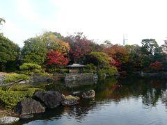 平成24年の紅葉も間近にやってきた白鳥庭園