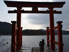 愛犬と紅葉の箱根へ③ 芦ノ湖畔 箱根神社