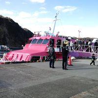 2011年1月の伊豆大島初上陸 1泊2日