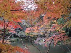 成田山紅葉祭り☆今年も名取亭で鰻☆2012/11/24