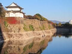 2012年大坂城の紅葉