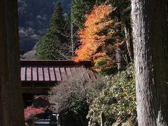 奥秩父の紅葉を訪ねて 大血川・太陽寺 Walking in Okuchichibu