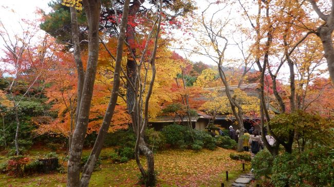 3連休の初日、朝方まで降っていた雨も昼前には上がり、天気も回復してきました。人出が多いのは覚悟の上。関西屈指の紅葉スポット、京都嵐山へ出かけてきました。