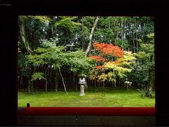 よっしゃ、京都へ行くどす(ぇ)!2012。 大徳寺塔頭・高桐院へ。