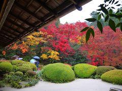 雨の紅葉めぐり(その1)金福寺~詩仙堂